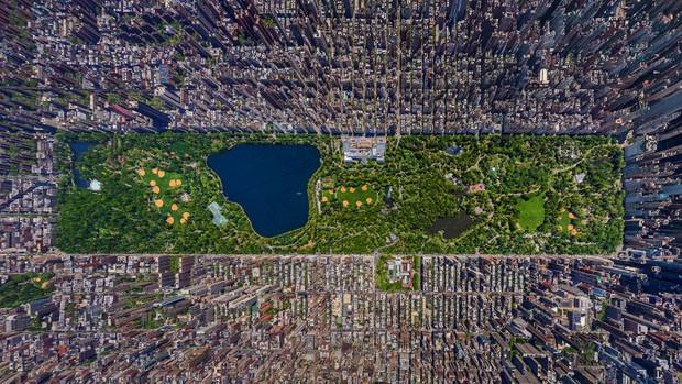 Parques (Foto: reprodução)