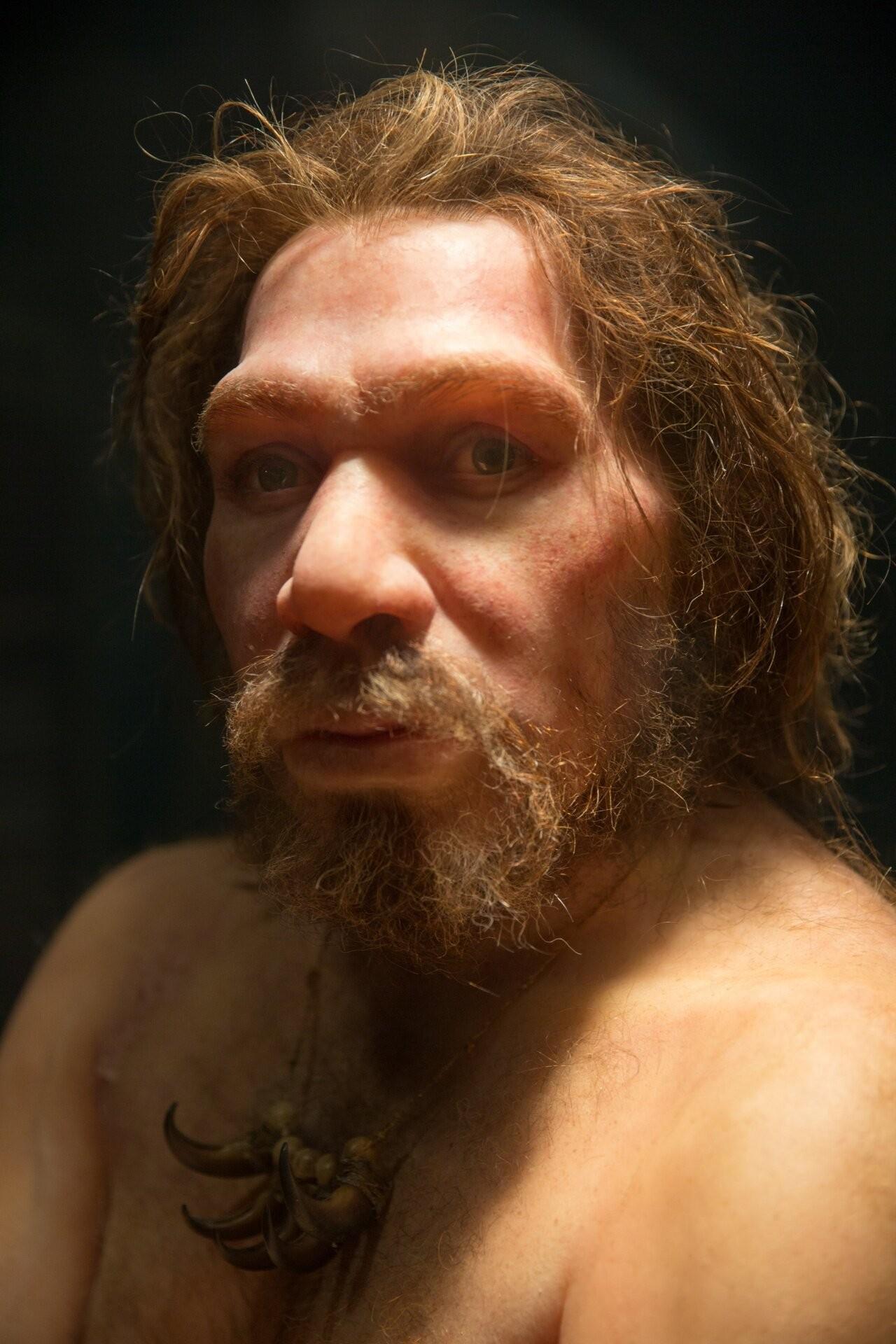 Laços sanguíneos próximos entre indivíduos e mudanças demográficas podem ter causado a extinção dos neandertais (Foto: Petr Kratochvil/ Creative Commons )