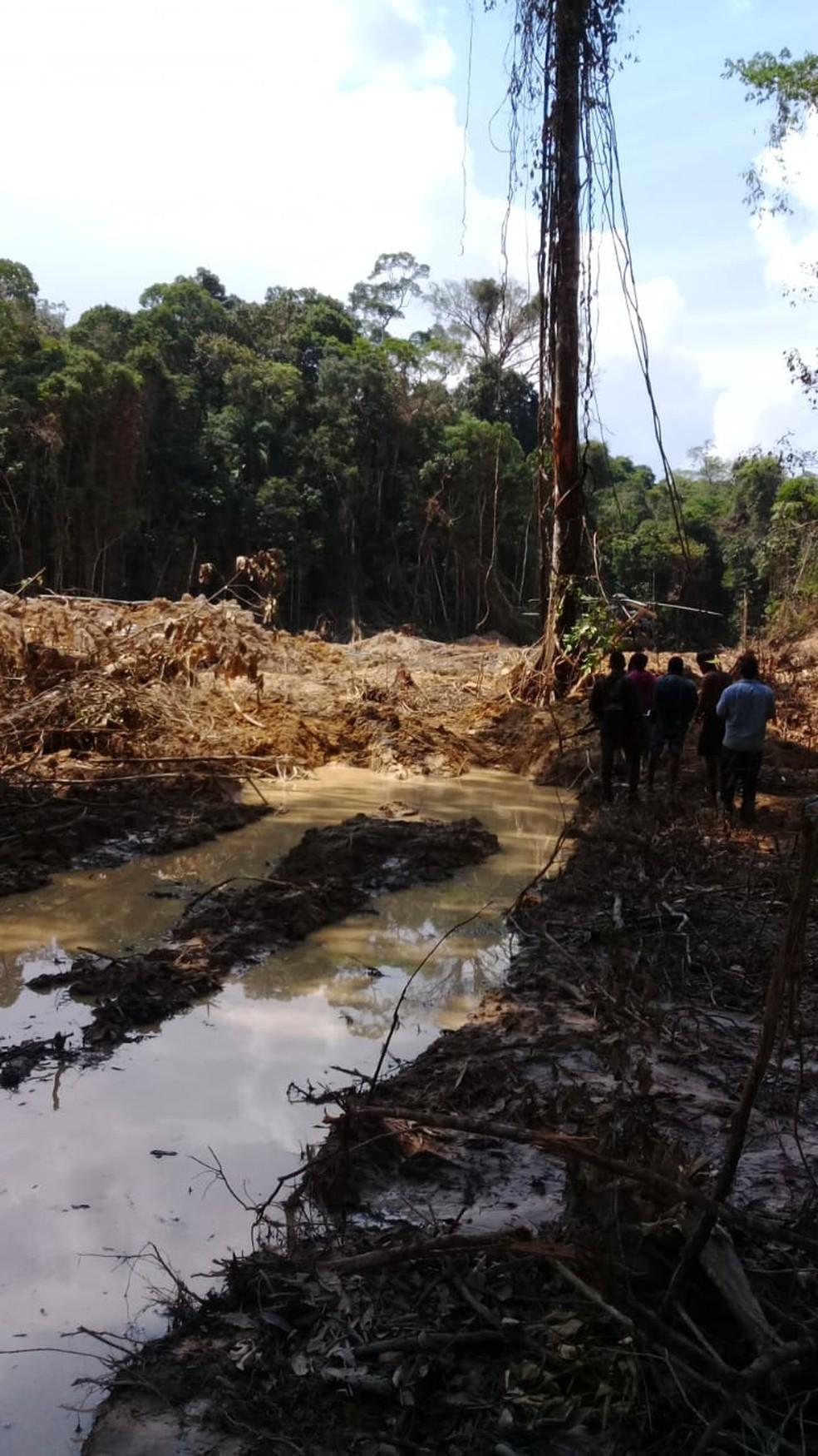 Área desmatada descoberta pela PF em parque nacional — Foto: PF/Divulgação