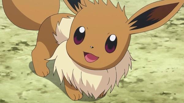 Eeve é uma das espécies mais fofas de Pokémon (Foto: Divulgação)