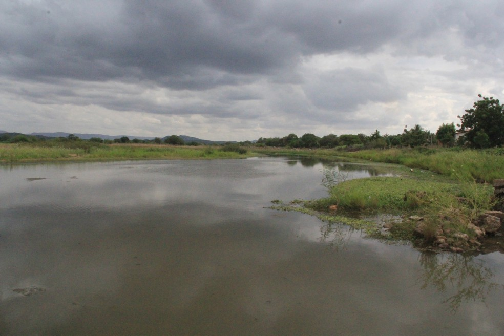 Produtores rurais de Iguatu, no interior do Ceará, comemoram período de chuva na região — Foto: Honório Barbosa/SVM