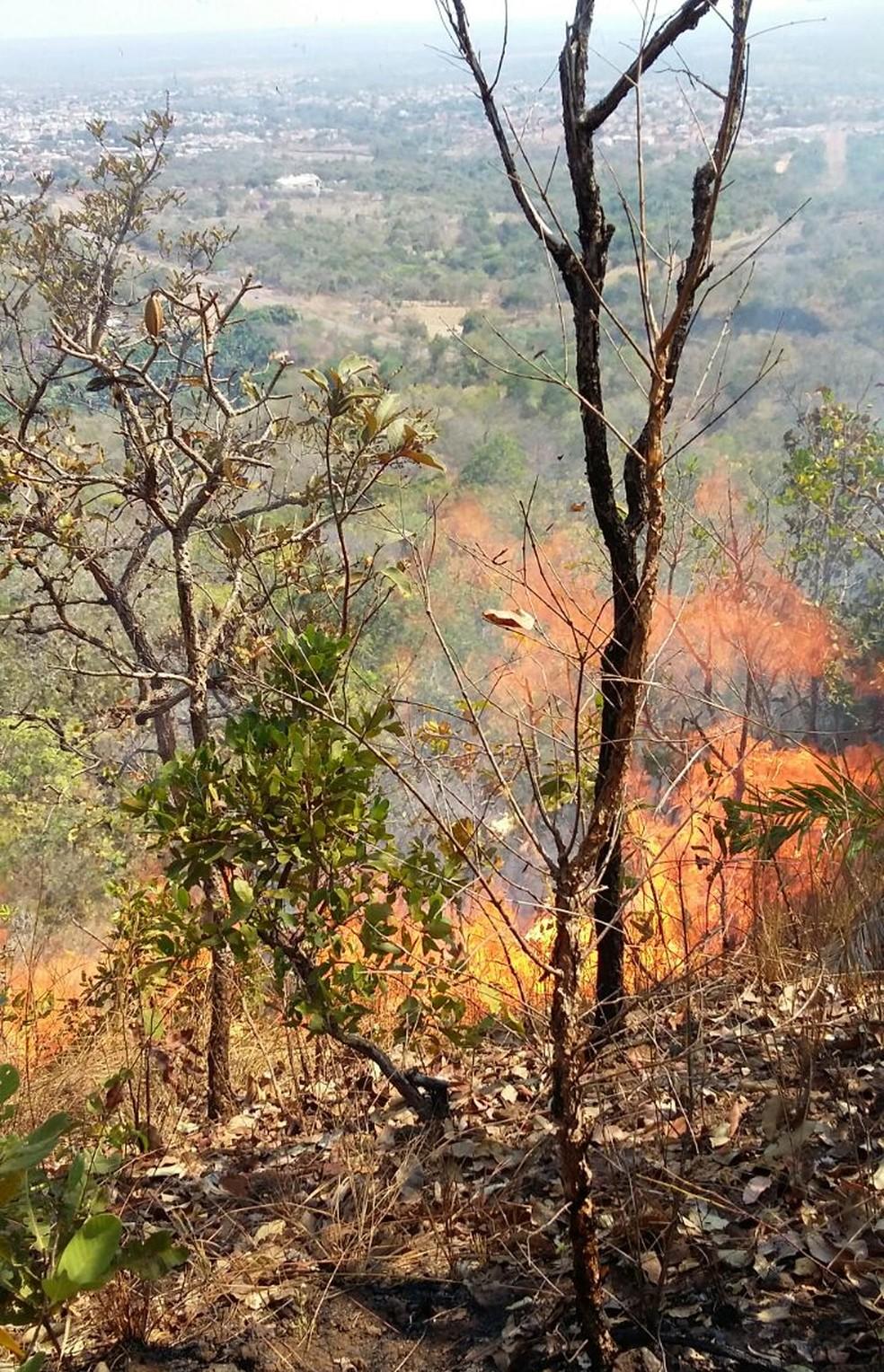 Tocantins registrou mais de 8 mil focos de incêndio em 2018 — Foto: Divulgação/Bombeiros