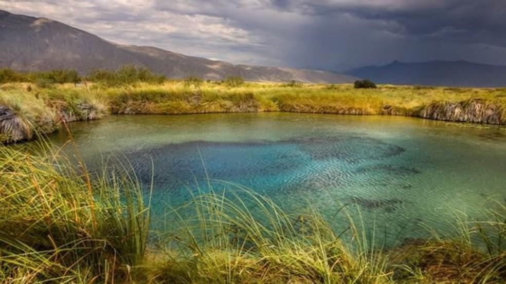 Região de Cuatro Ciénegas, no México, reúne piscinas naturais — Foto: Getty Images/BBC