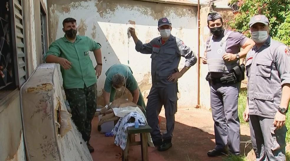 Onça recebeu atendimento de veterinário após ser capturada em Jales — Foto: Reprodução/TV TEM