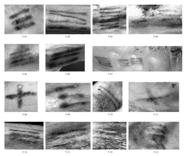 Os 19 conjuntos de tatuagens de Ötzi (Foto: Divulgação)