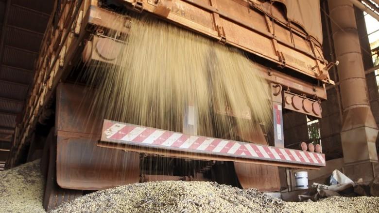 Caminhão descarrega soja em Primavera do Leste (MT) (Foto: REUTERS/Paulo Whitaker)