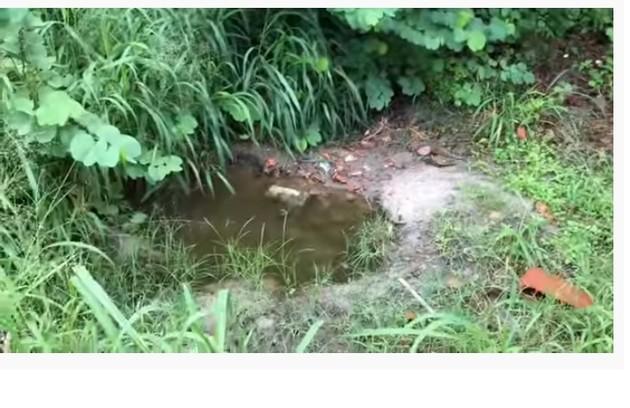 A youtuber mostra a casa onde passou a infância. O quintal tem um buraco que surgiu após a família cavar para tirar terra (Foto: Reprodução)
