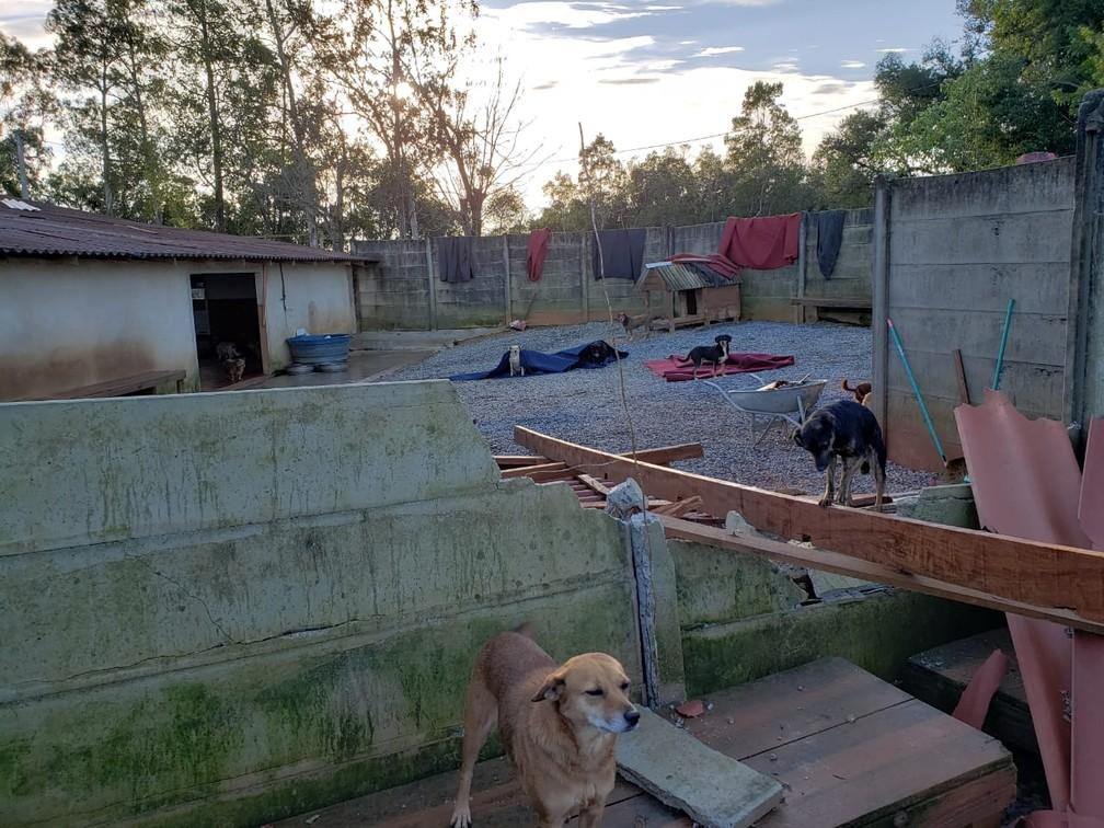 Organizadores pedem ajuda para reconstruir o abrigo  — Foto: Divulgação