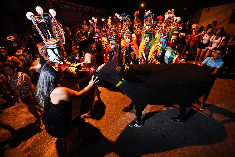 Boi Tinga anima o carnaval de São Caetano de Odivelas, no PA