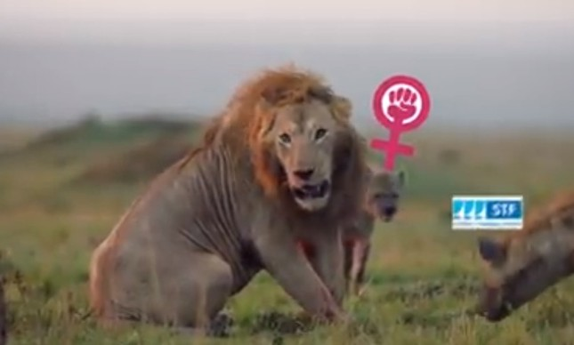 Trecho do vídeo compartilhado no tuíter do presidente Bolsonaro em que ele é representado por leão e a o STF por uma hiena