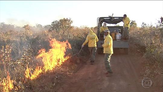 Aceiros são feitos para evitar incêndio no Parque Nacional das Emas