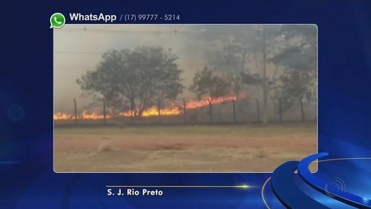 Bombeiros se mobilizam para controlar queimadas em Rio Preto
