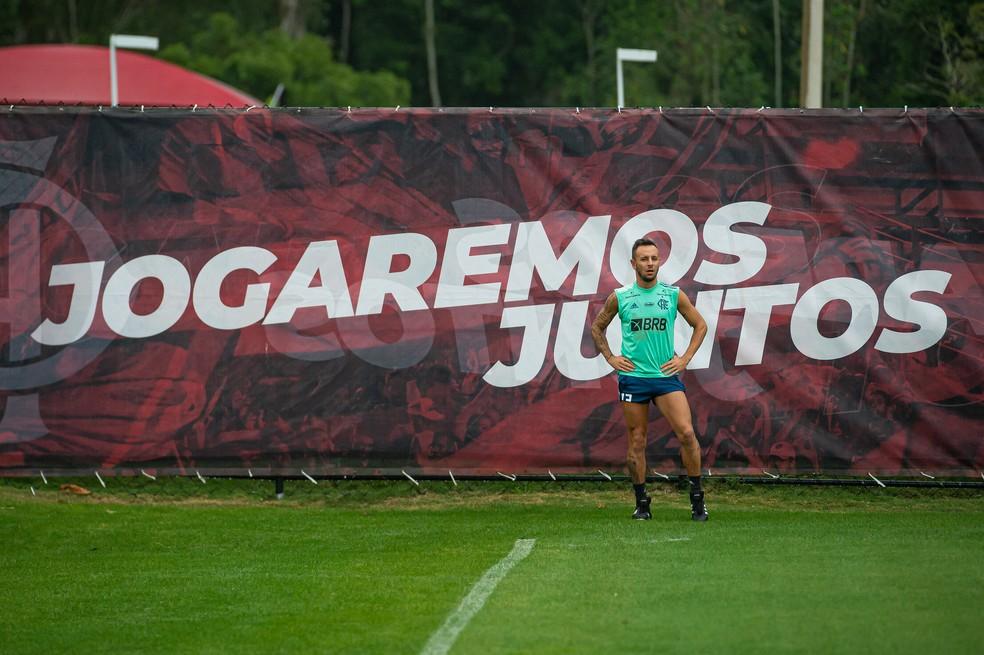 Rafinha ainda se recupera de uma torção no tornozelo — Foto: Alexandre Vidal/Flamengo