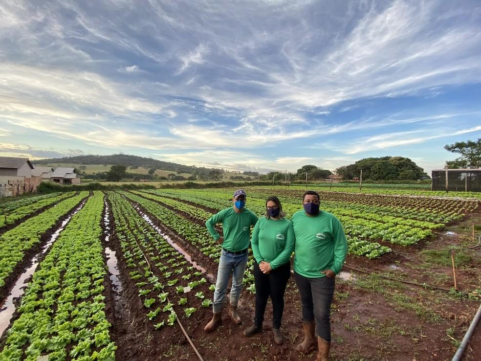 Família do Michael Douglas dos Santos, que cultiva hortaliças em Palmeiras de Goiás (GO) — Foto: Divulgação/Senar