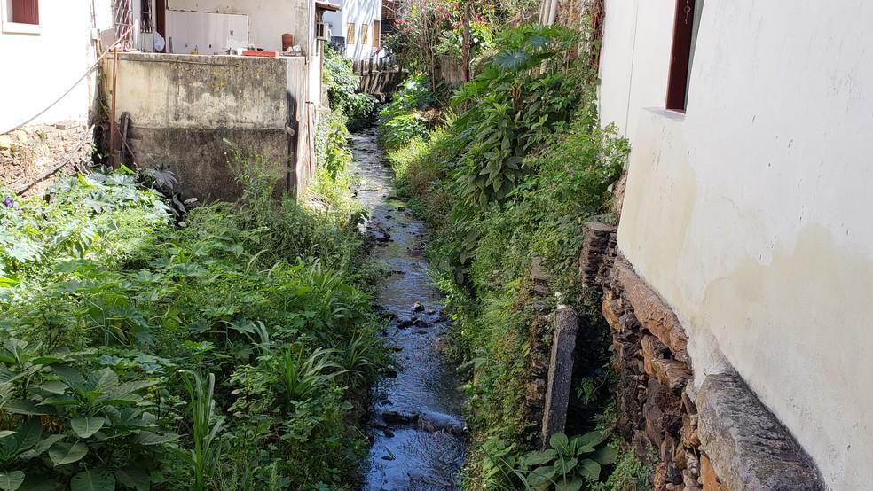 Córrego que passa em frente à casa de Alcenira e de vários outros moradores do centro histórico de Ouro Preto. — Foto: Thais Pimentel/G1