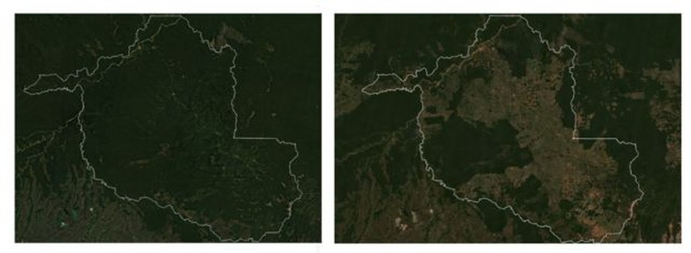 Imagens de satélite mostram avanço do desmatamento em Rondônia entre 1985 (à esq.) e 2020; Estado já perdeu um terço da cobertura original — Foto: Google