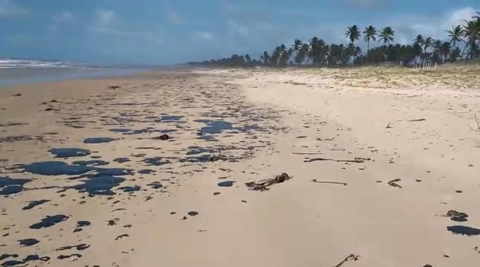 Manchas de óleo que atingem mar no Nordeste chegam à Bahia — Foto: João Arthur/Tamar