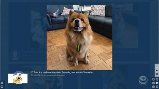 Mania de Cão: Veja mais fotos de telespectadores