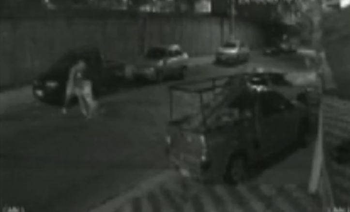 Jovem denuncia ataque de pitbull que escapou de casa em Várzea Paulista; vídeo