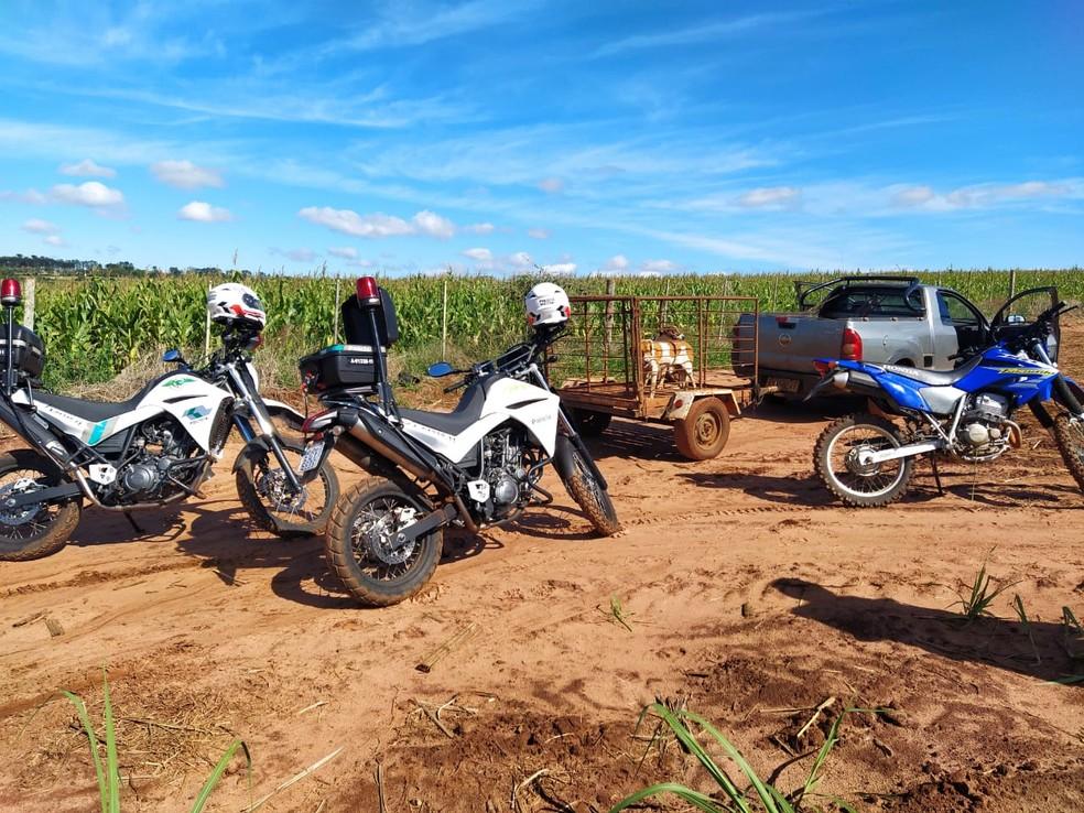 Caminhonete foi encontrada na zona rural de Avaré — Foto: Polícia Ambiental/Divulgação
