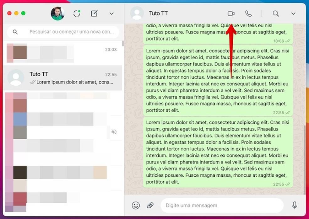 Fazendo ligação de vídeo no WhatsApp pelo PC — Foto: Reprodução/Helito Beggiora