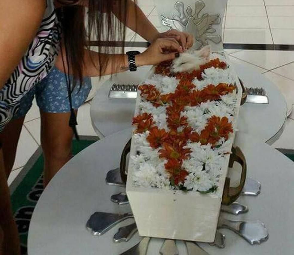 Bichinho viveu 14 anos com a família, que quis prestar uma última homenagem (Foto: Reprodução/internet)
