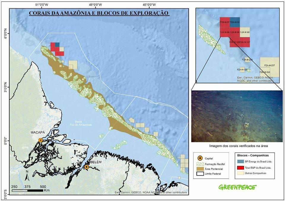 Mapa mostra a presença dos corais na área (Foto: Greenpeace)