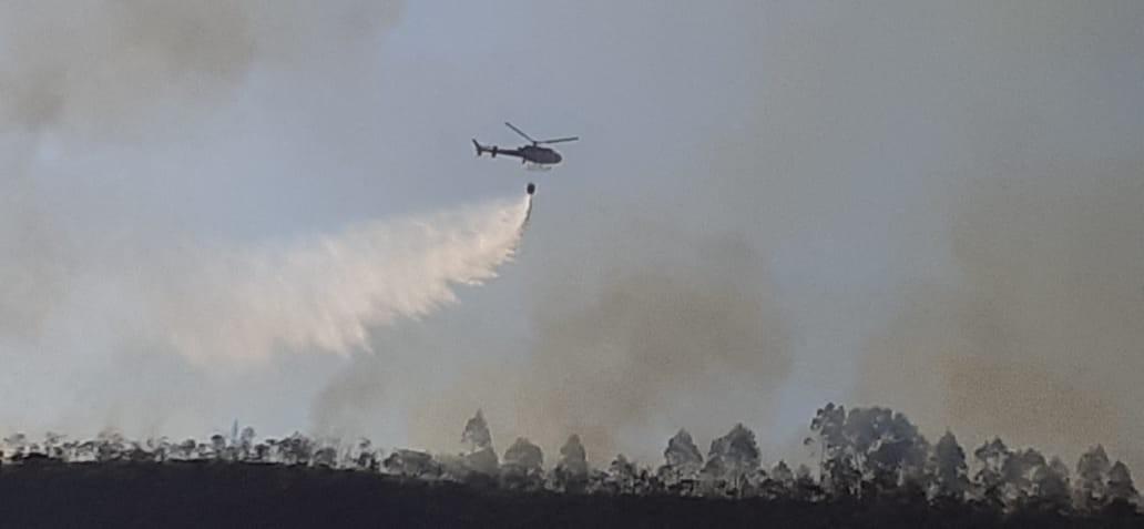 Queimadas destroem áreas de vegetação em 9 cidades da Serra do RJ nesta quarta - Notícias - Plantão Diário