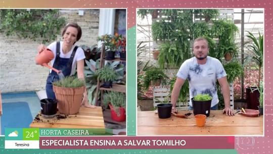 Murilo Soares dá dica para cultivar plantas em casa durante a quarentena da Covid-19