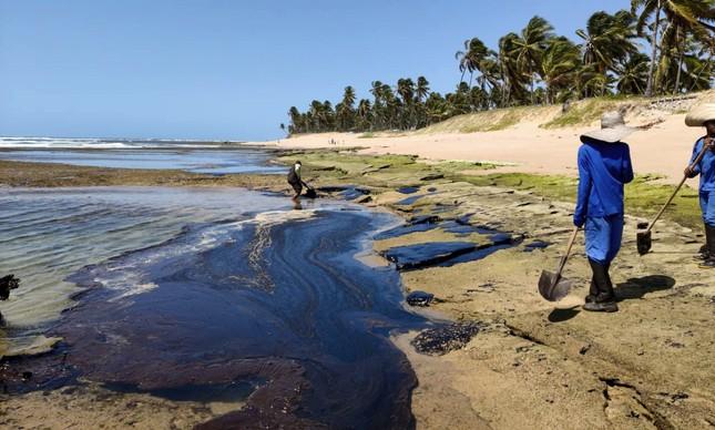 Óleo atinge a Praia do Forte, no litoral da Bahia