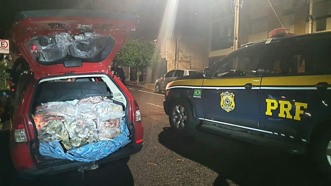 Polícia apreende 200 kg de peixes sem procedência dentro de porta-malas de carro em Paverama