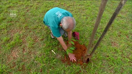 Morador de Araras (SP) dedica parte da vida a plantar árvores pela cidade