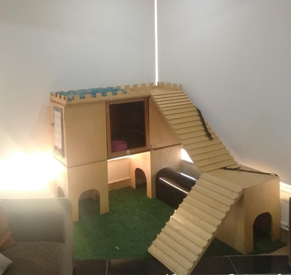Castelo de madeira que Paulo construiu para ser a casa da Nugget — Foto: Arquivo pessoal