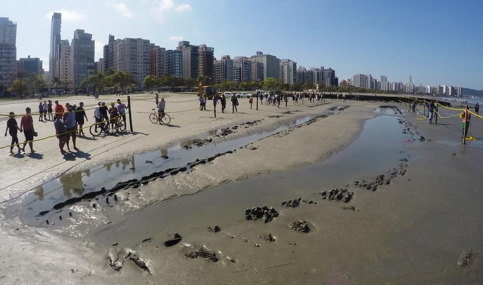 Destroços de navio foram encontrados em Santos, SP (Foto: José Claudio Pimentel/G1)