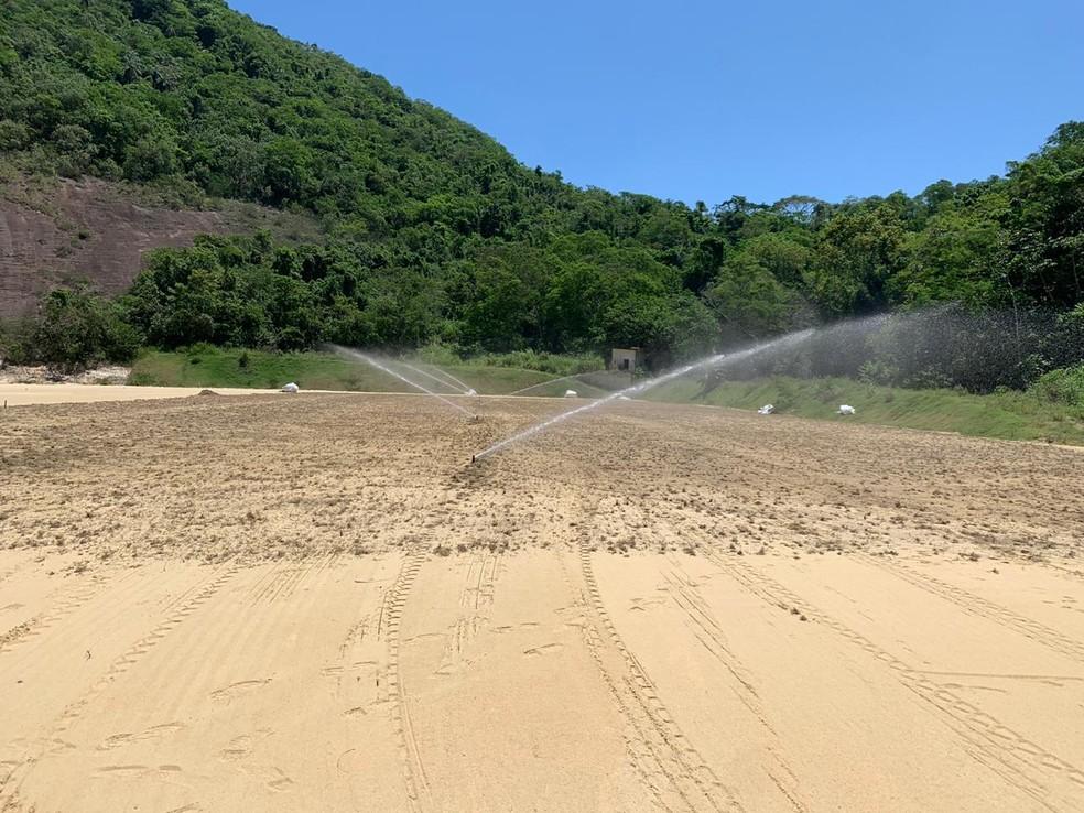 Gramado do campo 3 do CT do Botafogo começou a ser plantado; ainda falta concluir os campos 1 e 2 — Foto: Divulgação