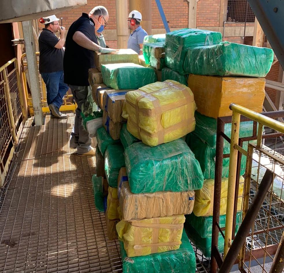 Mais de três toneladas de drogas foram incineradas em Avaré — Foto: Polícia Civil/Divulgação