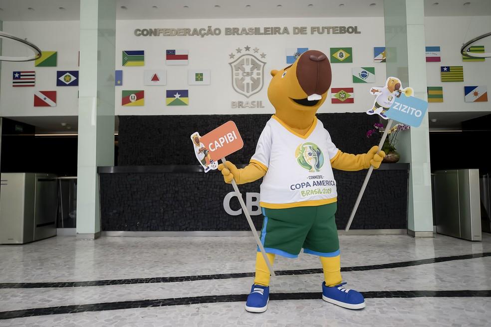 Capibi ou Zizito, votação decide nome da mascote — Foto: Divulgação/CBF