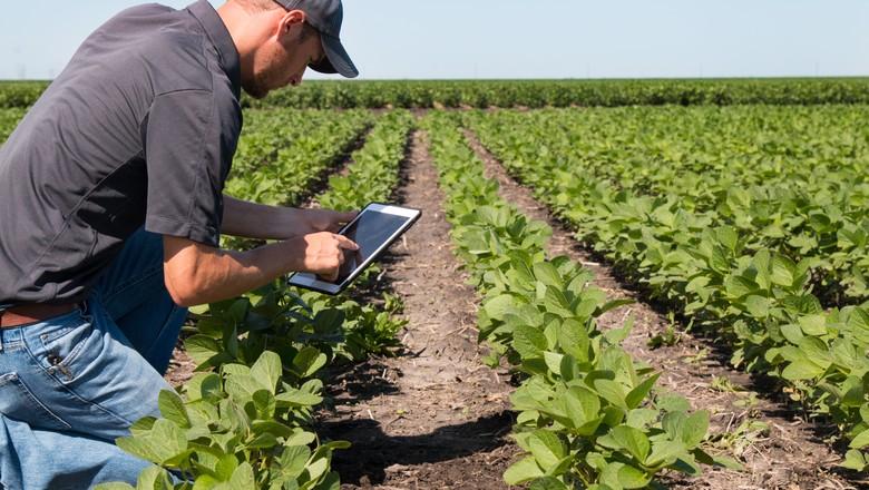 digital-tecnologia-aplicativo-celular-tablet (Foto: ThinkstockPhotos)