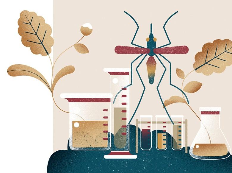 Defensivos agrícolas (Foto: ilustração: Bárbara Malagoli )