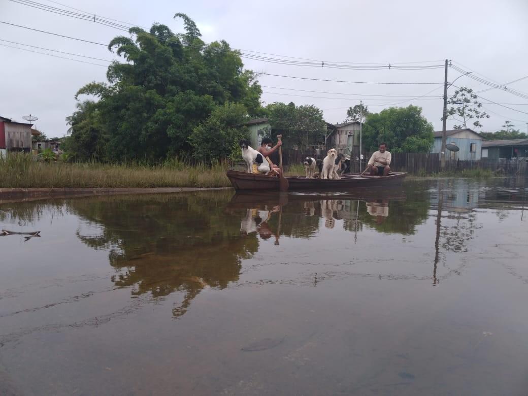 Nível dos rios segue baixando em Rio Branco e mais 5 cidades do Acre