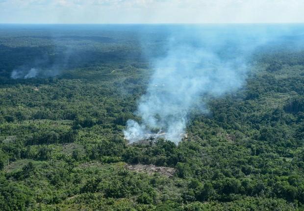 Incêndio na floresta amazônica, em São Gabriel da Cachoeira (Foto: Chico Batata/picture alliance via Getty Images)