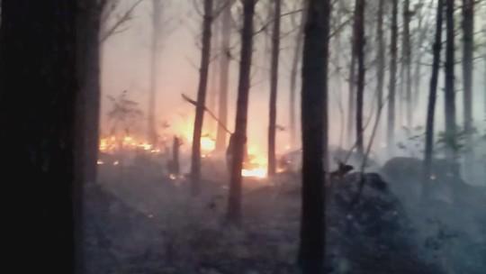 Incêndio atinge 7 mil m² de vegetação em Irani