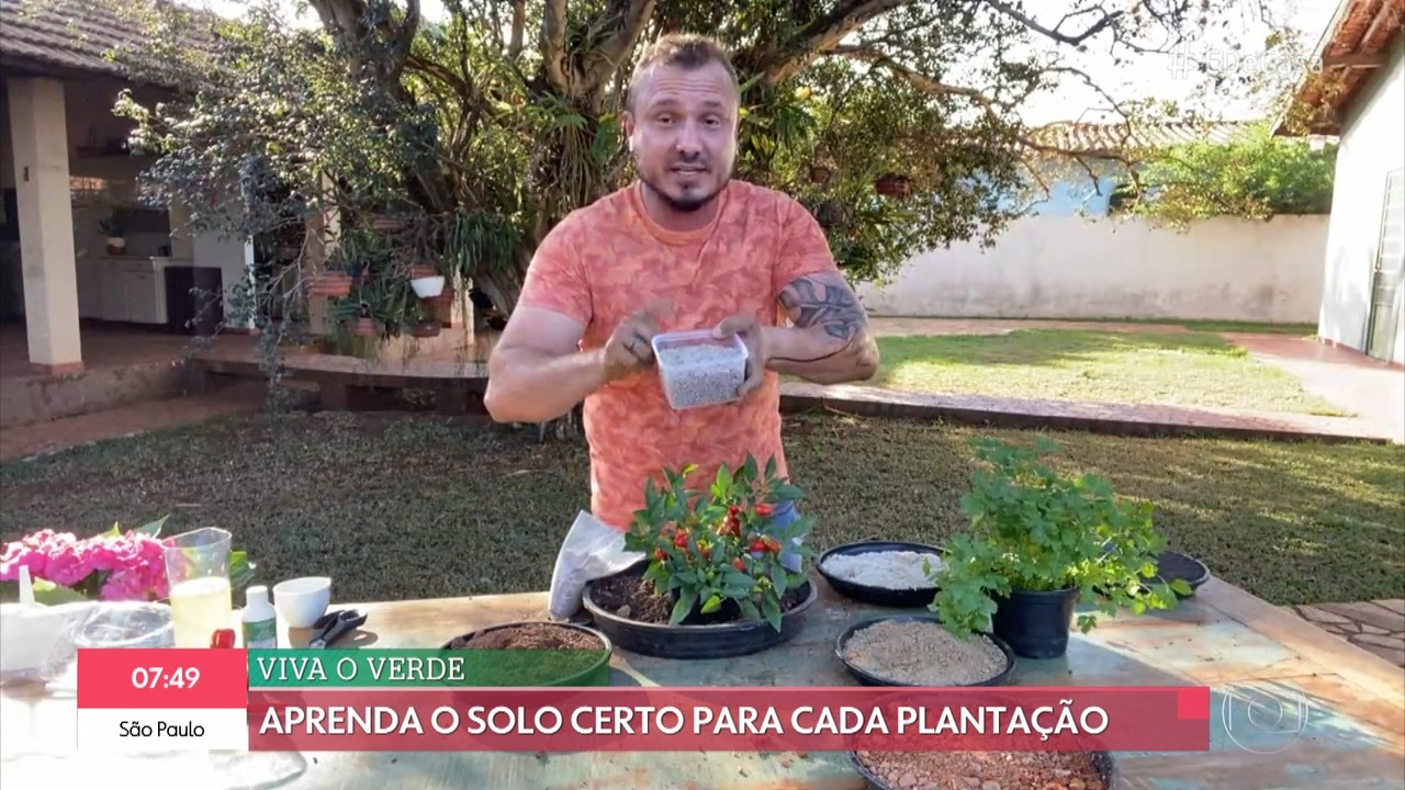 Aprenda o solo certo para cada plantação