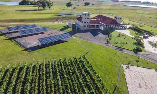 Guatambu: estância enoturística a 14 quilômetros de Dom Pedrito com parque de energia solar