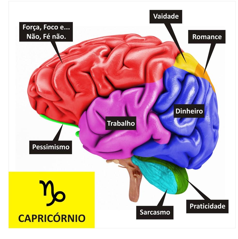 Cérebro de Capricórnio  (Foto: TV Globo )