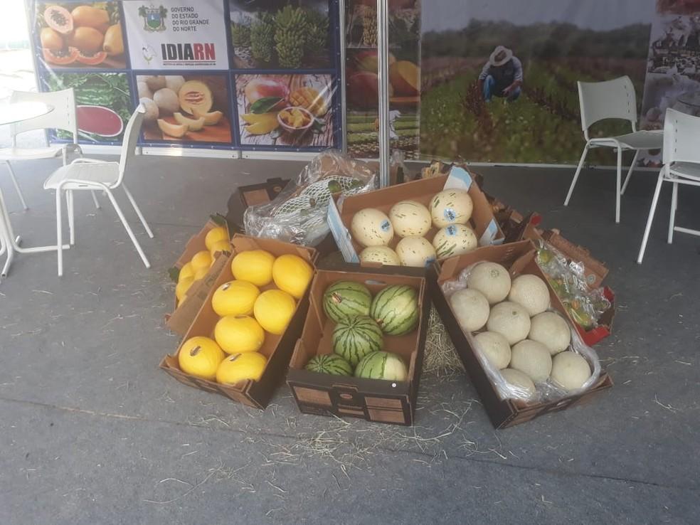 Expofruit movimenta setor agrícola em Mossoró  (Foto: Divulgação )