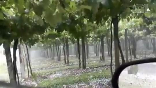 Chuva de granizo atinge cidades da Serra do Rio Grande do Sul; veja vídeo