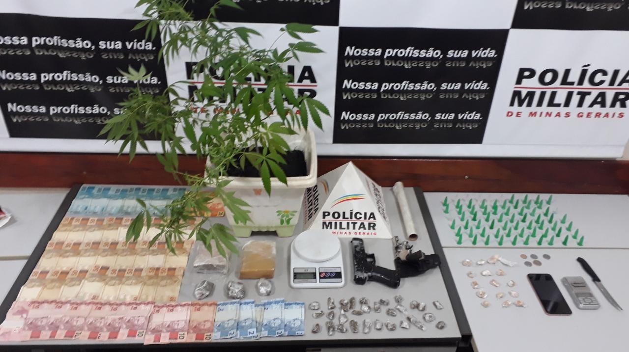 Polícia encontra pé de maconha, drogas e dinheiro em casa de Três Pontas, MG