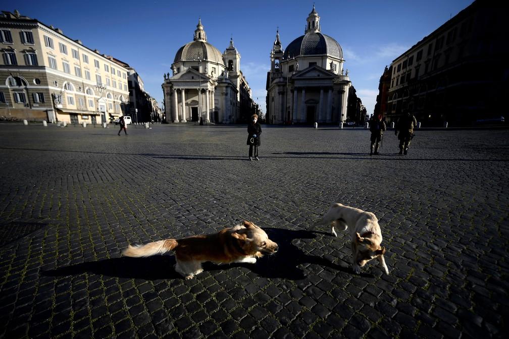 2 de abril - Mulher observa cachorros brincando na Piazza del Popolo, em Roma, na Itália, na quinta-feira (2)   — Foto: Filippo Monteforte / AFP