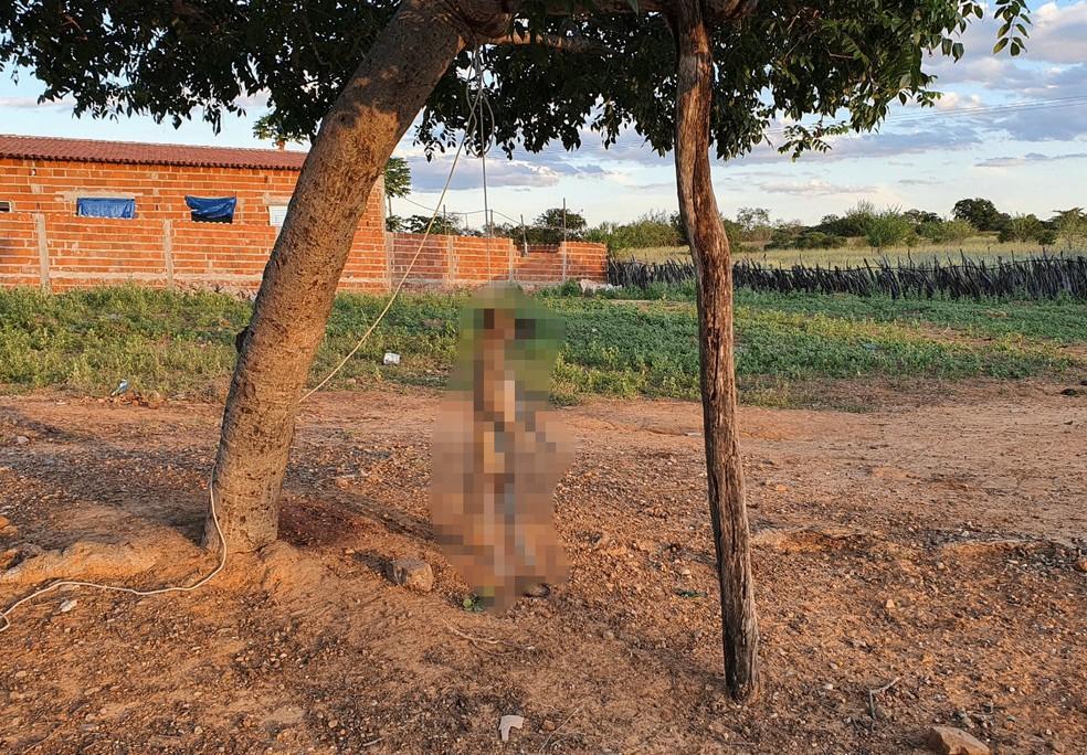 Idoso mata cadela enforcada em praça pública no Sul do Piauí — Foto: Divulgação/Policia Civil